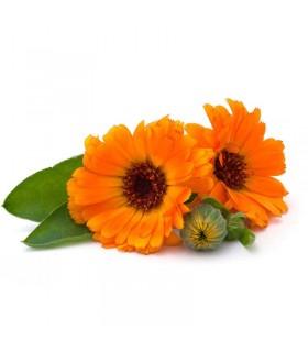 عرق گلبهار